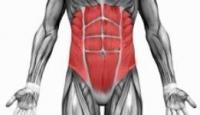 5 دلیل برای تمرکز بر عضلات میان تنه